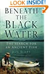 Beneath the Black Water: The Search f...