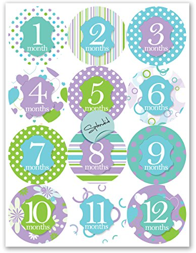 Baby *GIRL* Apparel Celebration Stickers-Celebrate 12 Months-Photo prop & keepsake (Splendid Design)