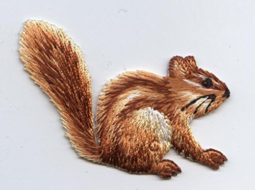 Chipmunk Iron on Embroidered Patch