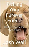 Picking Your Furever Friend: How to Choose the Right Puppy