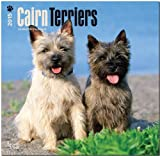 BrownTrout Publishers Ltd. Cairn Terriers 2015 Wall Calendar