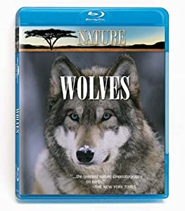 Nature In The Valley Of The Wolveschristmas In Yellowstone Blu-ray from Questar