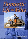 Domestic Life in Wales