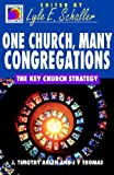 One Church, Many Congregations: The Key Church Strategy (Ministry for the Third Millennium Series) (0687085993) by J. T. Ahlen