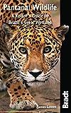 Bradt Pantanal Wildlife: A Visitor's Guide to Brazil's Great Wetland (Bradt Wildlife Explorer)