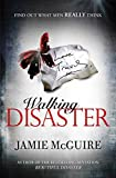 Walking Disaster (Beautiful Book 2)