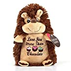 Chocolate Scented Hedgehog