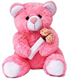 Amardeep-and-Co-Pink-Teddy-with-Roses-40cms-ad1136