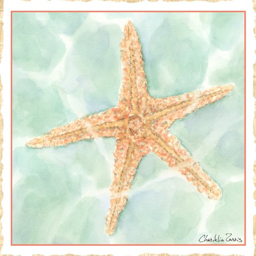 Green Frog Art 6X6 Canvas Gallery Wrapped Art, Ocean - 1