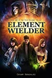 Element Wielder (The Void Wielder Trilogy Book 1)