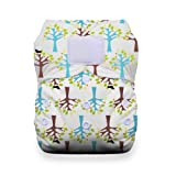 Thirsties Duo All in One Cloth Diaper with Hook and Loop, Blackbird, Size 2