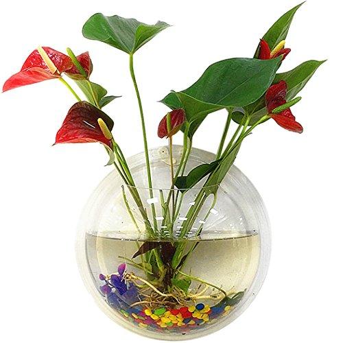 Wall hanging fish tank aquarium clear acrylic vase flower for Aquarium vase decoration