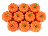 SAMYO Fake Fruit Home House Kitchen Decoration Artificial Lifelike Simulation Mini Pumpkins Halloween house Decoration-Set of 10 - Orange