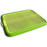 Klean Paws Puppy Pad Holder ● Keeps Paws Dry ● No Torn Pads ● Protects Floors ● Save Money (Spring Green)