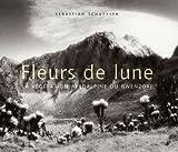 echange, troc Schutyser Sebastian - FLEURS DE LUNE. La végétation afroalpine du Rwenzori