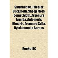 Saturniidae: Arsenurinae, Ceratocampinae, Hemileucinae, Oxyteninae, Saturniidae Stubs, Saturniinae, Gonimbrasia...