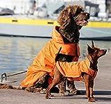OHF ペット用 冬服 綿入れ ドッグウエア 小中大型犬 ジャッケト パーカー 【全6サイズ】 (オレンジ, XXL)