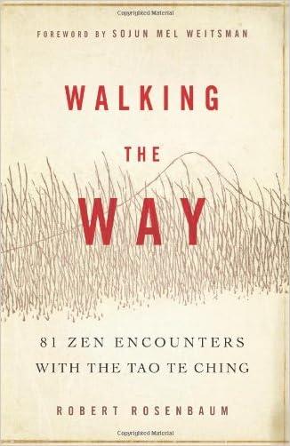 Walking the Way: 81 Zen Encounters with the Tao Te Ching
