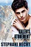 Kallens Atonement (Lost Shifter)