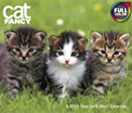 2013 Cat Fancy Year-In-A-Box Calendar