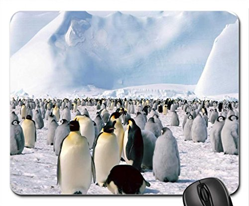 penguins-in-antarctica-mouse-pad-mousepad