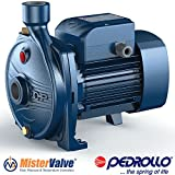 Pedrollo Electric Water Pump CP 0.25-2.2 kW centrifugal pump - CPm 670 - 3 HP 220 V 60Hz irrigation pumps, cooling, air conditioning, water s. systems, liquids transfer, pressure systems
