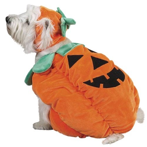 PUMPKIN POOCH - Pet Halloween Costume LARGE -