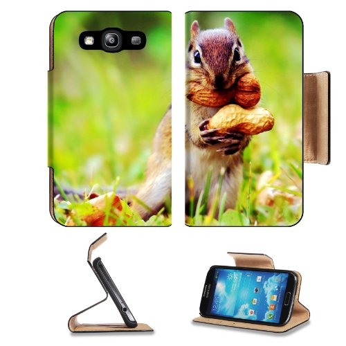Ardilla Cacahuate Squirrel Peanut Pets Samsung Galaxy S3 I9300 Flip Cover Case With Card Holder Customized Made To Order Support Ready Premium Deluxe Pu Leather 5 Inch (132Mm) X 2 11/16 Inch (68Mm) X 9/16 Inch (14Mm) Luxlady S Iii S 3 Professional Cases A front-641215