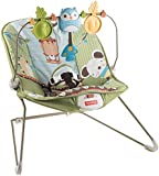 Fisher-Price Forest Fun Bouncer, Green Grove (Discontinued by Manufacturer)