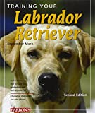 Training Your Labrador Retriever: 2nd Edition (Training Your Dog)