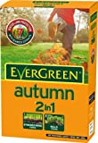 Evergreen Autumn 100 sq m Lawn Food Carton