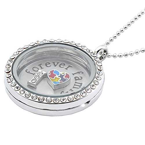 insten-61cm-charm-gift-stainless-steel-and-glass-locket-charm-necklace-forever-family