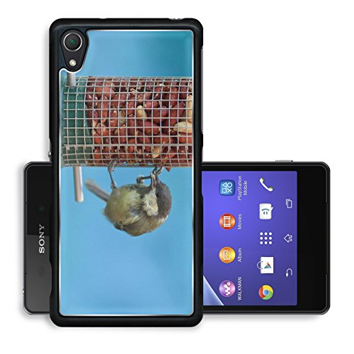 Liili Premium Sony Xperia Z2 Aluminum Backplate Bumper Snap Case Great tit eating peanuts on a bird feeder blue background Image ID 22006007