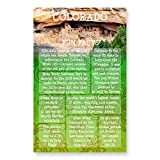 COLORADO FUN FACTS postcard set of 20 identical postcards. US state trivia post card pack. Made in USA.
