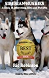 SIBERIAN HUSKIES - Interesting Facts and Pictures
