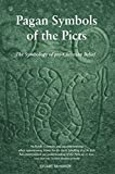 img - for Pagan Symbols of the Picts: The Symbology of pre-Christian Belief book / textbook / text book