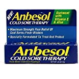 Anbesol Cold Sore Therapy Ointment with Vitamin E & Aloe