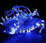 ビューティーライフ【Beauty Life®】イルミネーションLEDライト 点灯8パターン・コントローラ付B (BLUE ブルー, 100灯&10M)