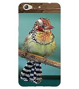 ColourCraft Cute Bird Design Back Case Cover for LeEco Le 1S