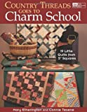 img - for Country Threads Goes to Charm School: 19 Little Quilts from 5