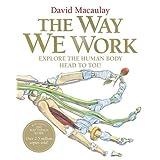 The Way We Workby David Macaulay
