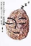 ストーンパワー・石の奇跡—石が教えた快眠・ダイエット・健康