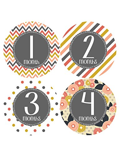 Months In Motion 384 Monthly Baby Stickers Baby Girl Month 1-12 Milestone front-115831