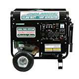 Pentagon Tools Portable PT10000DF Dual Fuel Electric Start Generator 16HP 10000W
