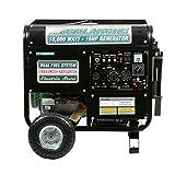 Pentagon Tools Portable PT10000DF Dual Fuel Electric Start Generator 16HP 10000W