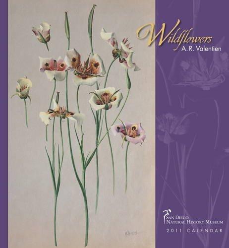 Wildflowers 2011 Calendar