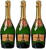 Louis Bouillot Perle Noire Cremant de Bourgogne Blanc de Noirs Brut Non Vintage Wine 75 cl (Case of 3)