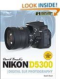 David Buschs Nikon D5300 Guide to Digital Slr Photography: