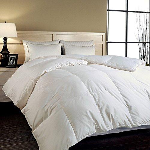 Elliz Super White Down Comforter Year Round Warmth Duvet Insert 100% Cotton 600 Fill Power, King Size, White (Single Duvet Insert compare prices)
