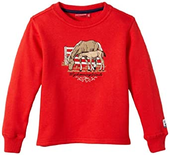 Salt & Pepper Pull Col ras du cou Manches longues Fille - Rouge - Rot (purpur red) - FR : 8 ans (Taille fabricant : 128)